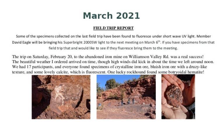 Mar 2021 Field Trip Thumb